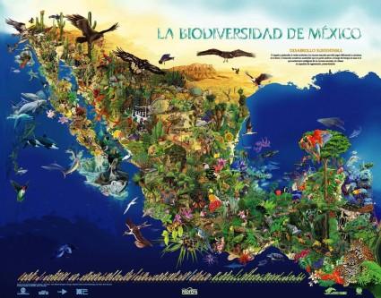 que-es-biodiversidad