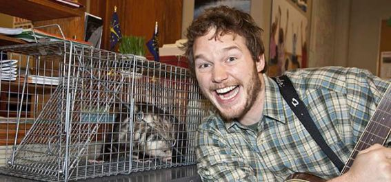 chris-pratt-biografia-curiosidades-parks-and-recreation